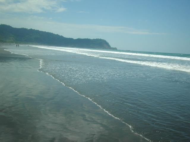 Ocean Beach Offical Website